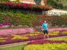 Ботанический сад Мадейры 5