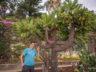 Ботанический сад Мадейры 8