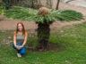 Ботанический сад Мадейры 10