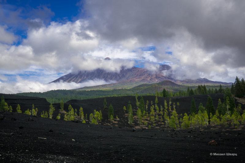 Маршрут по вулканам около Тейде 11