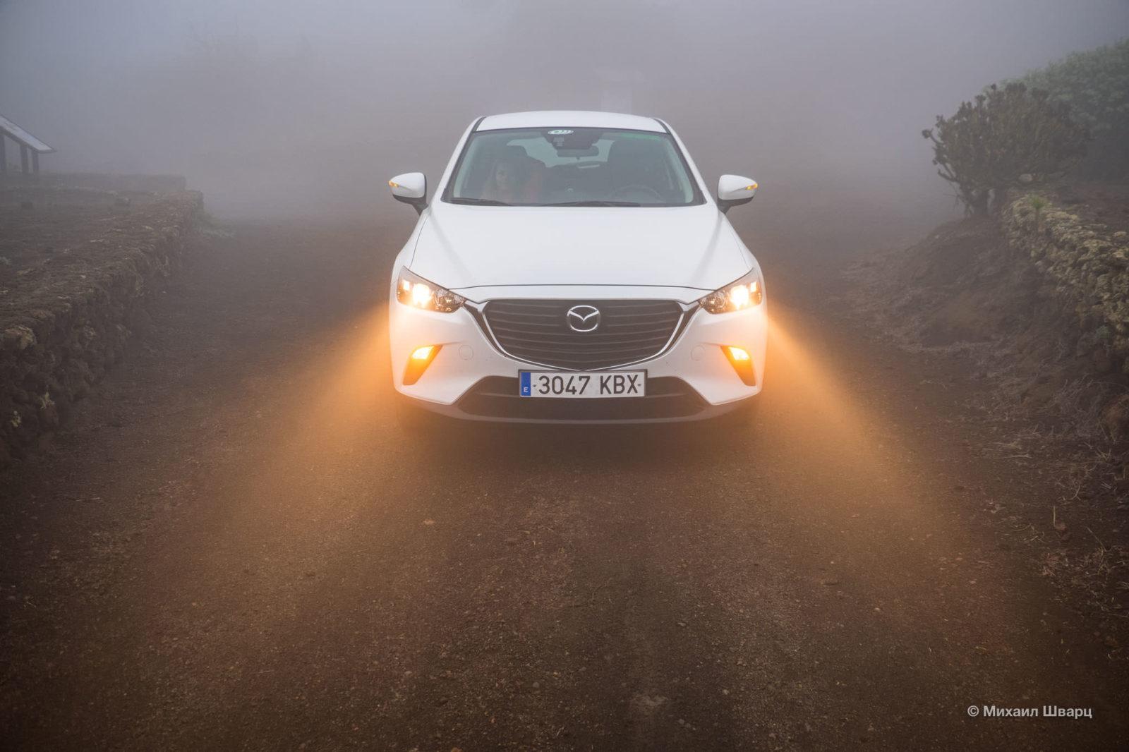 Попали в туман