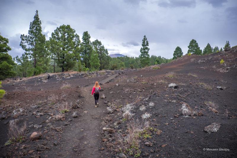 Маршрут по вулканам около Тейде 20