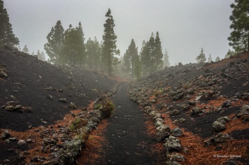 Маршрут по вулканам около Тейде 3