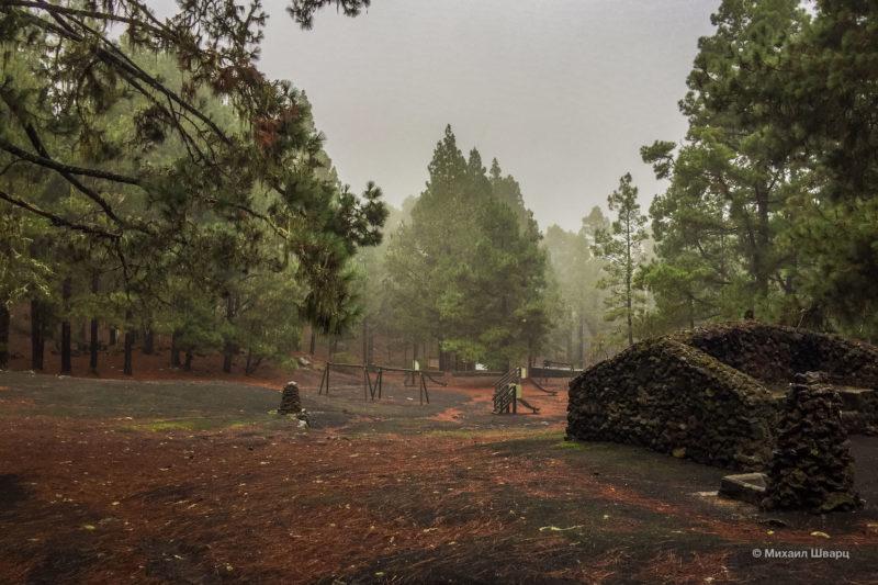 Маршрут по вулканам около Тейде 21