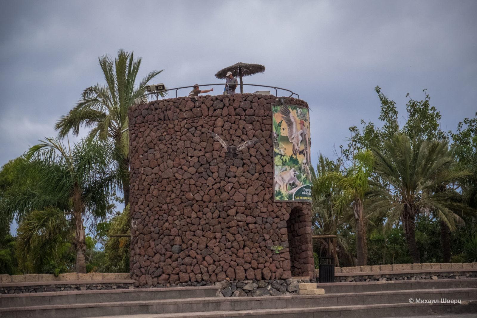 Башня, с которой запускают крупных птиц