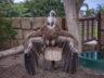 Парк орлов 24