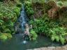 Тропический сад и музей дворца Монте 12