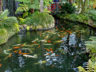Тропический сад и музей дворца Монте 8