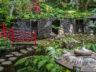 Тропический сад и музей дворца Монте 5