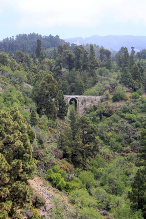 Северо-запад острова: зелень и леса повсюду