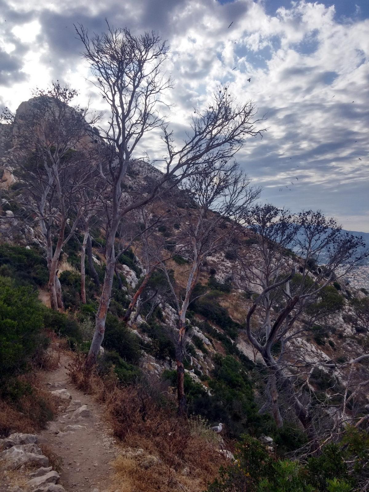 Идея небольшого путешествия в Испанию 42