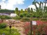 Ботанический сад Cap Roig 7