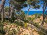 Ботанический сад Cap Roig 9