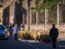 Поездка по Каталонии: маршрут и что почём 41