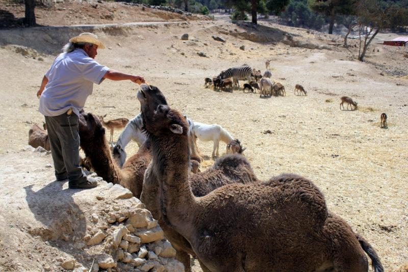 Идея небольшого путешествия в Испанию 9