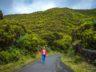 Азоры: остров Терсейра (мой отчет) 15