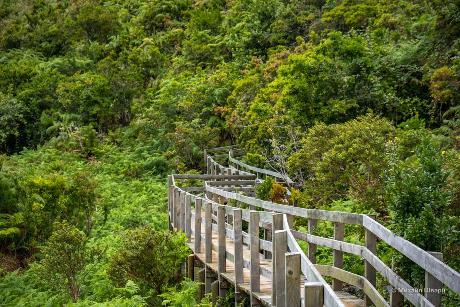 Иногда маршрут проходит по деревянным мосткам