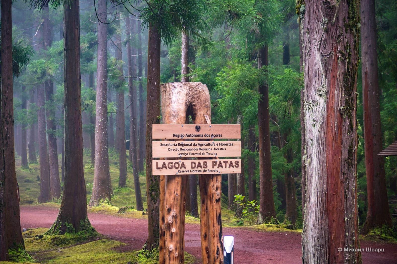 Озеро Lagoa das Patas