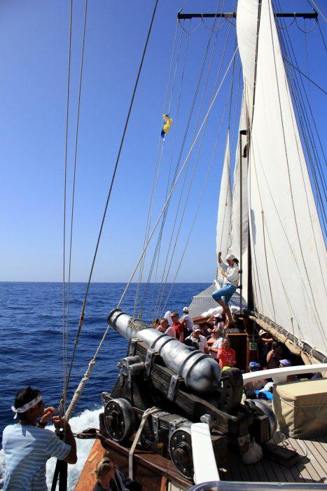 В гости к дельфинам и китам на пиратском корабле 5