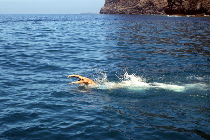 В гости к дельфинам и китам на пиратском корабле 16