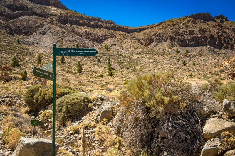 Маршрут на гору Guajara с видом на Тейде 3