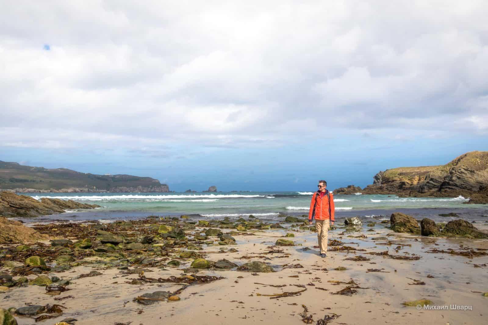 Пляж с водорослями