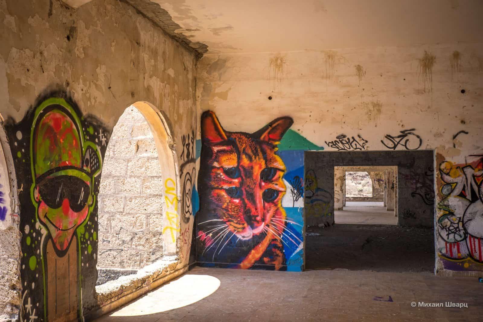 Рассматриваем граффити