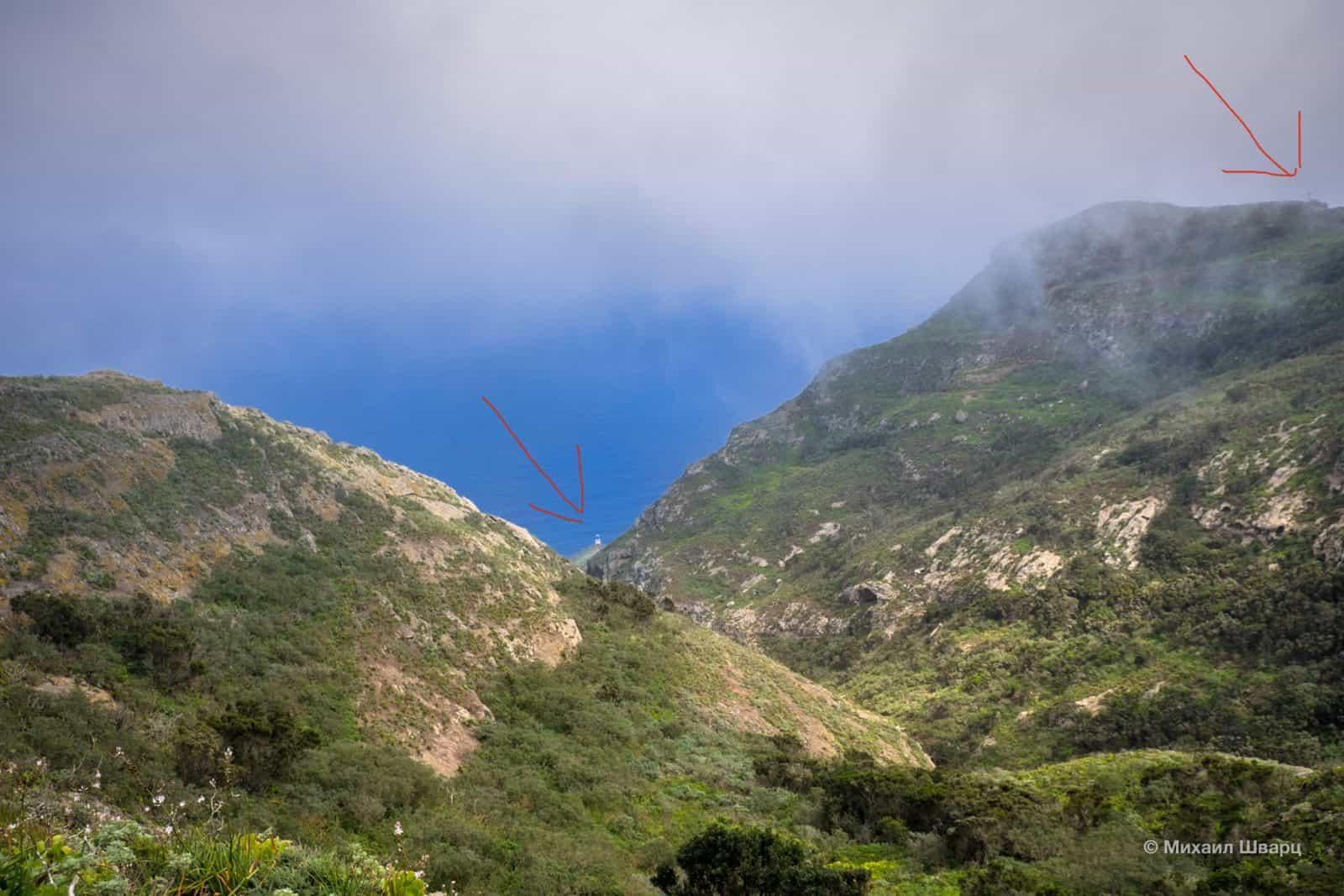 Дорога к маяку Faro de Anaga пройдет через одинокое дерево