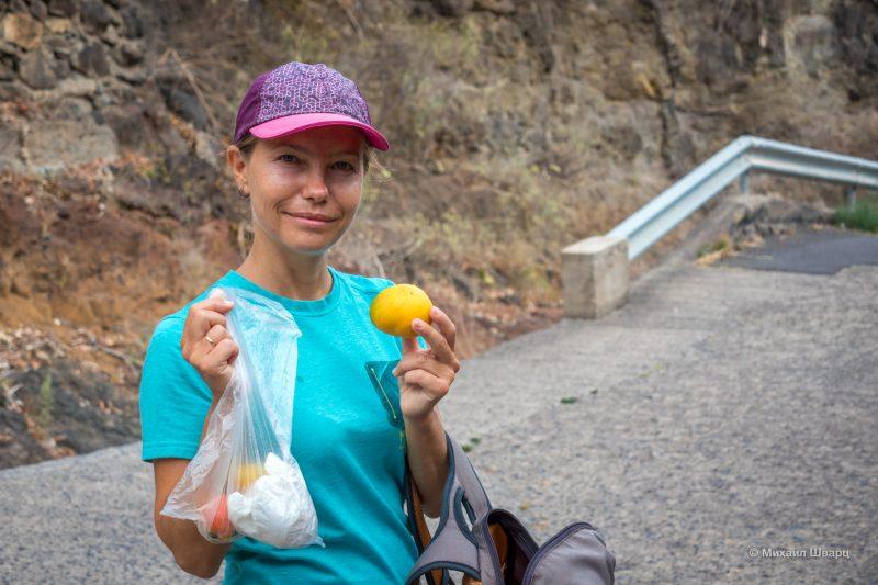 Набрали упавшие спелые манго