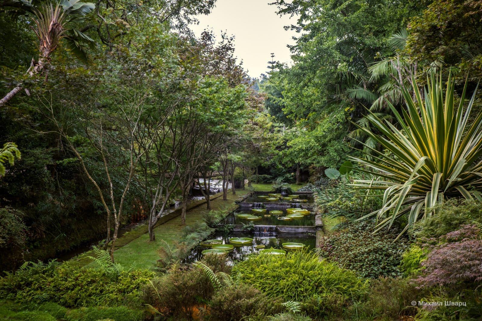 Природный парк и ботанический сад Терра-Ностра (Parque Terra Nostra)