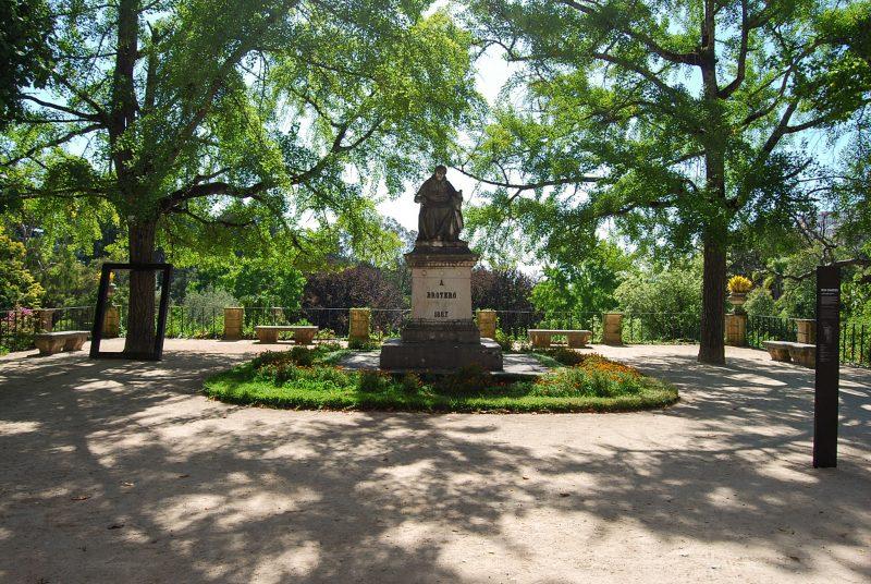 Ботанический сад университета (Jardim Botânico da Universidade de Coimbra)