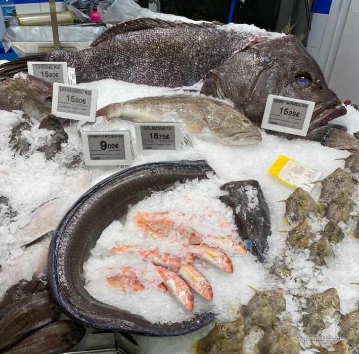 Канарская рыба Черне, солея, угорь, Барабули, групер
