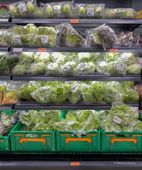 Разнообразие салатов